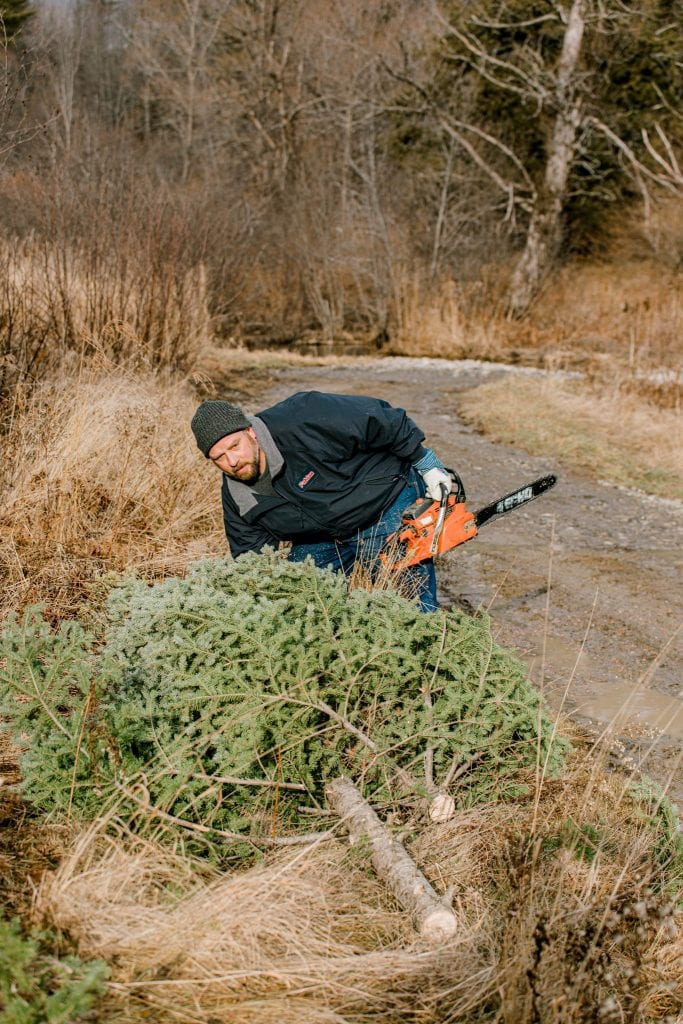 Dad, chain saw, Christmas Tree