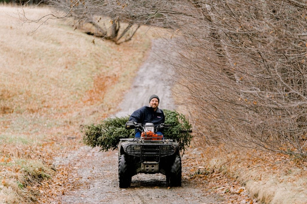 Dad bringing the tree back on the 4-wheeler, looking at the camera