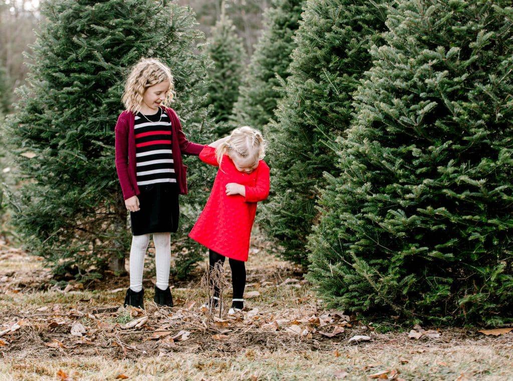siblings in a christmas tree farm. Little sibling being grumpy