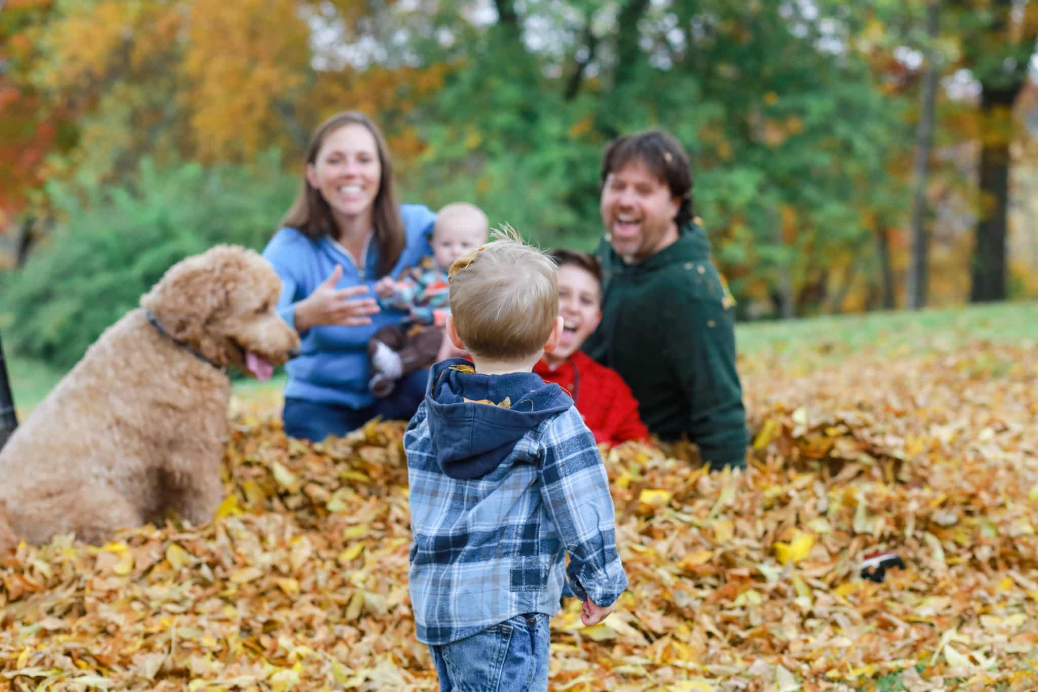 family playing in the leaves with a toddler looking at them