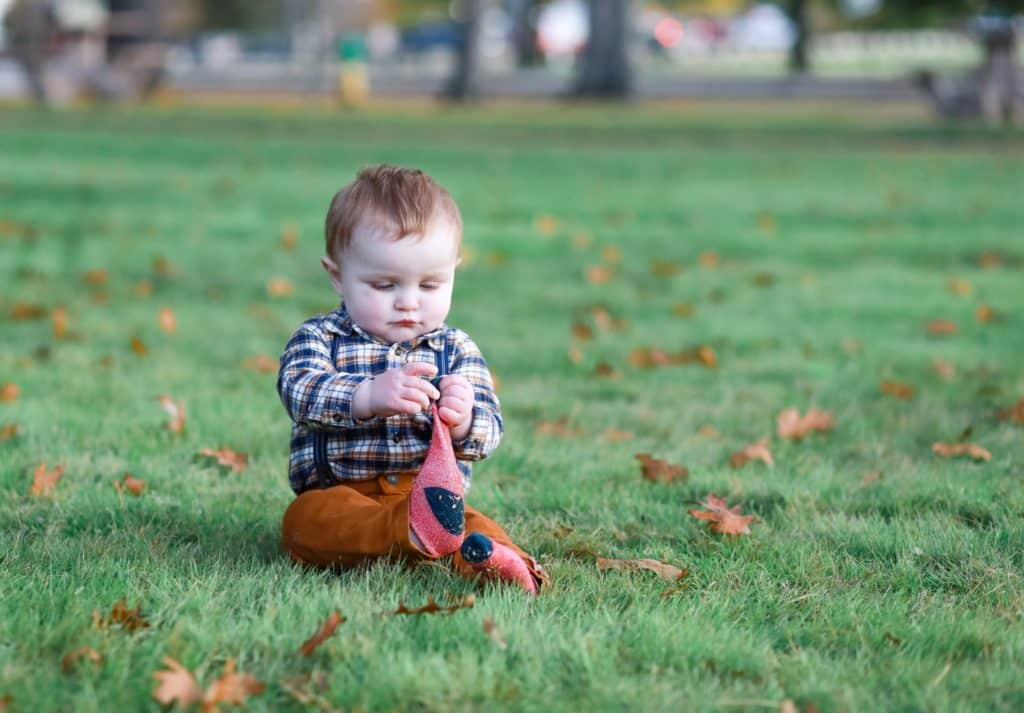 little brother in plaid sitting in the grass in the park playing with leaves