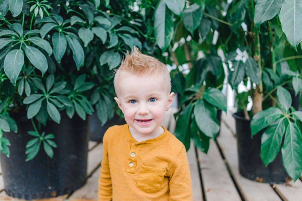 little boy looking at the camera in a greenhouse