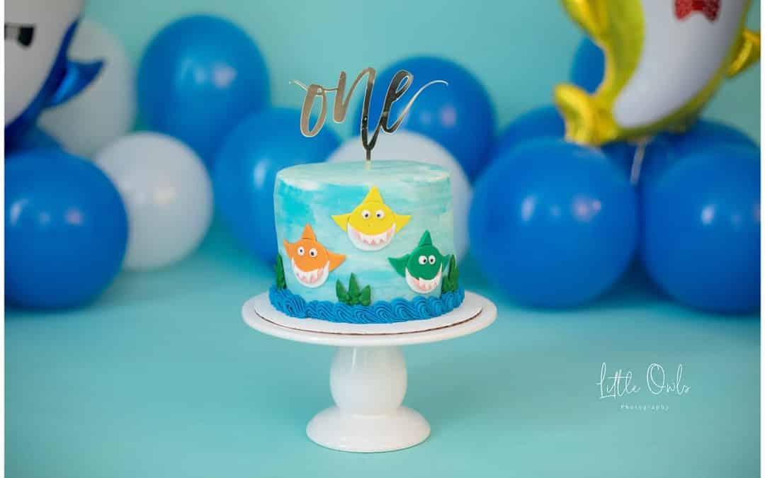 Declan's Cake Smash Photoshoot in Augusta, Maine