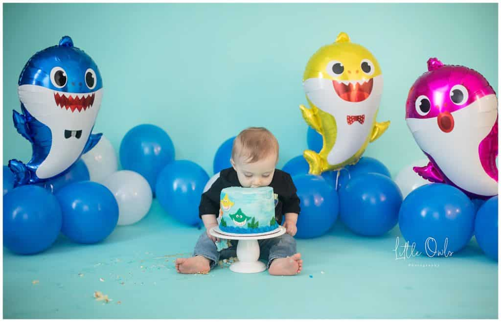one year old face in cake for cake smash session