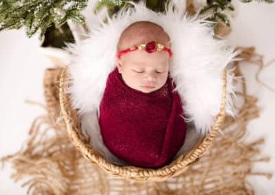 newborn sleeping in a basket in maine